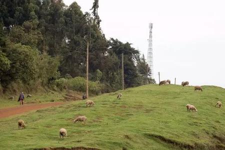 肯尼亚 - 东非大裂谷(Great Rift Valley)
